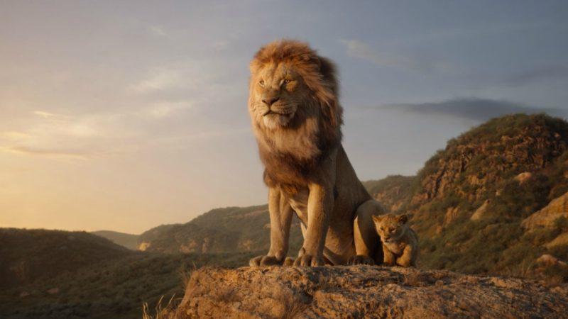 Il Re Leone immagine in evidenza