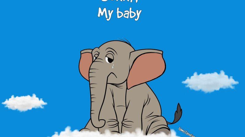 La triste storia dell'elefantessa e dell'ananas